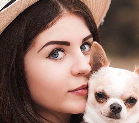 Cómo encontrar dónde hay chihuahuas en adopción?