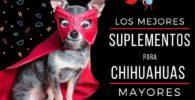 los mejores suplementos para chihuahuas
